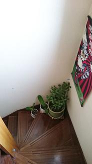 手すり(室内階段)